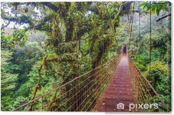 Canvas Bridge in het regenwoud - Costa Rica - Monteverde - Landschappen