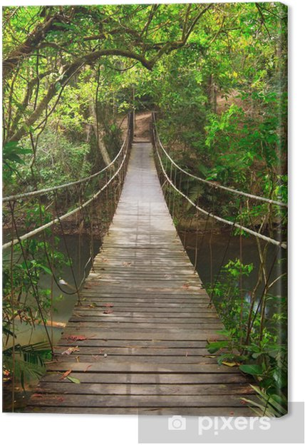 Canvas Brug naar de jungle, Khao Yai National Park, Thailand -