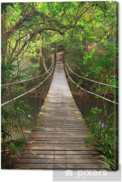 Canvas Brug naar de jungle, Khao Yai National Park, Thailand -