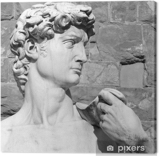 Canvas Close-up van de David van Michelangelo - Piazza Signoria in Florence - Monumenten