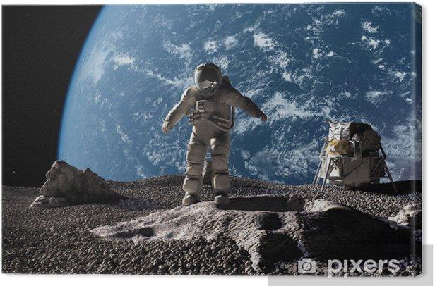 Canvas De astronaut - Thema's