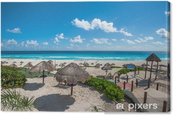 Canvas Dolphin Beach Scène Cancun Mexico Pixers We Leven Om