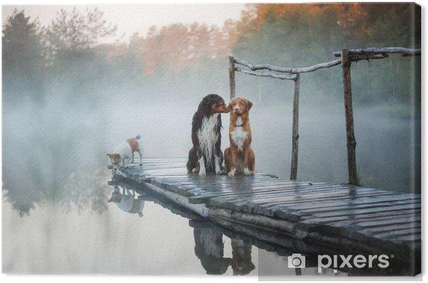Canvas Drie honden op een houten pier - Dieren