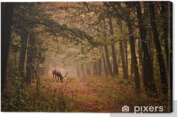Canvas Edelherten in een bos - Thema's