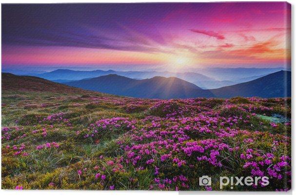 Canvas Flower - Weiden, velden en gras