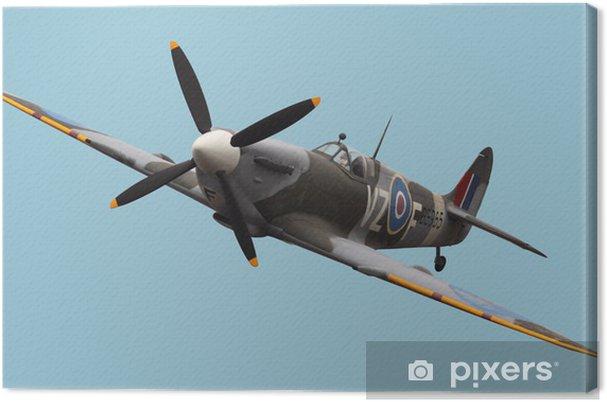 Canvas Geïsoleerde Spitfire - Thema's
