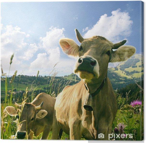 Canvas Gelukkig Koeien - Thema's
