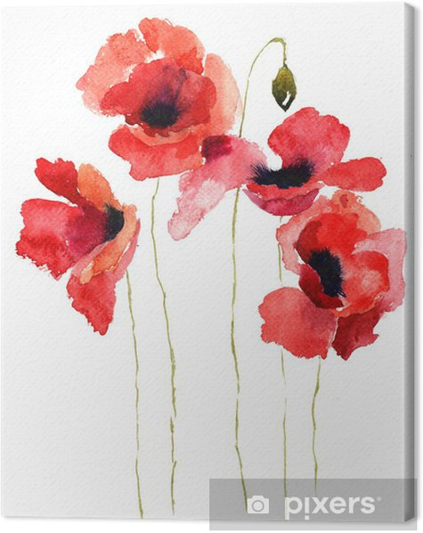 Canvas Gestileerde Poppy bloemen illustratie - Thema's