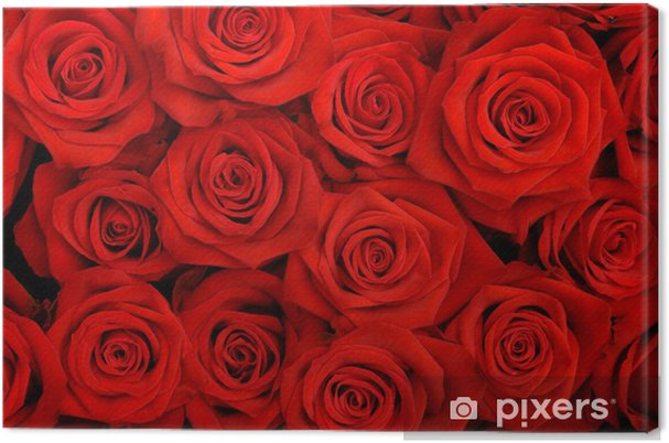 Canvas Grote bos rode rozen - Thema's