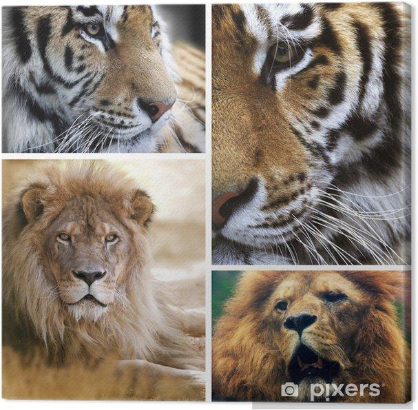 canvas grote katten collage • pixers® - we leven om te veranderen