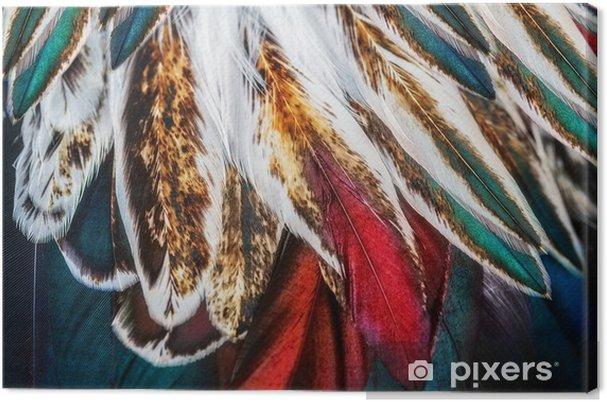 Canvas Heldere bruine veer groep van zo'n vogel - Dieren