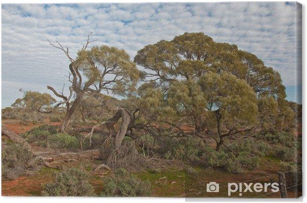 Canvas Het Australische landschap, Zuid-Australië - Oceanië