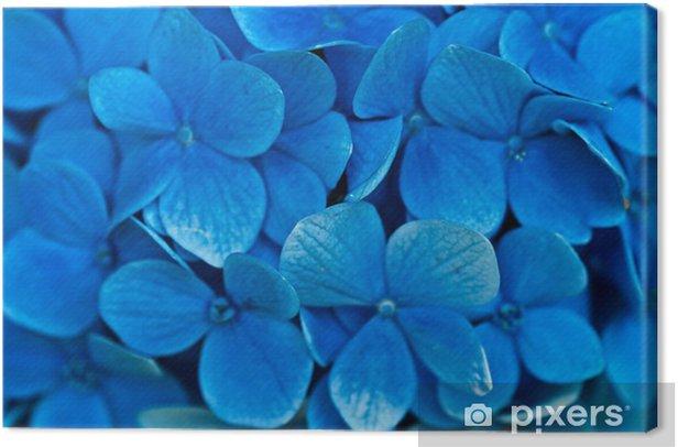 Canvas Hortensia bloemen. - Ecologie