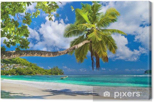 Canvas Idyllisch tropisch landschap - Seychellen - Thema's