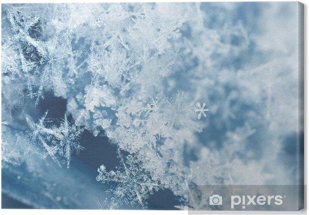 Canvas Ijzige sneeuwvlokken - Grafische Bronnen