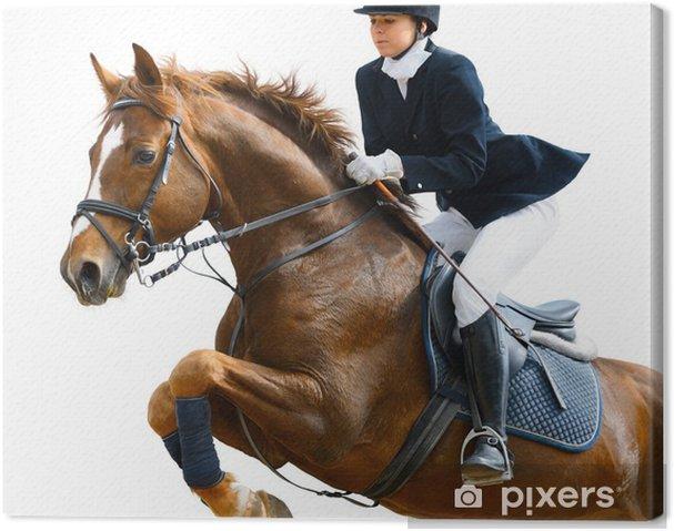 Canvas Jong meisje springen met zuring paard - geïsoleerd op wit - Individuele sport