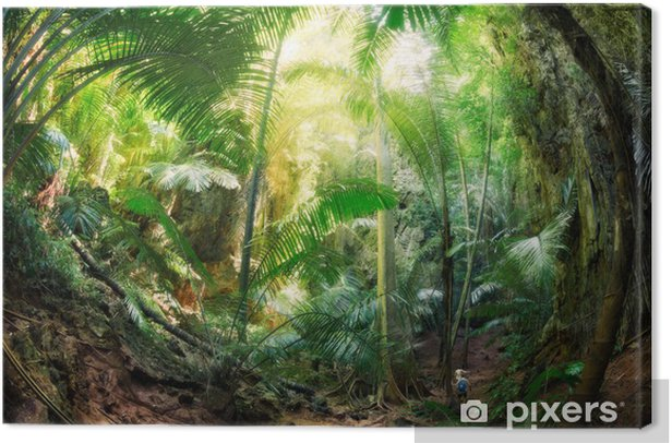 Canvas Jungle Krabi Thaïlande - Palmbomen