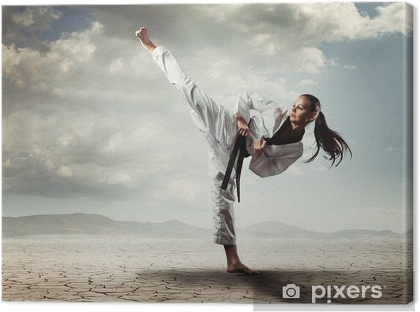 Canvas Karate meisje kick - Thema's
