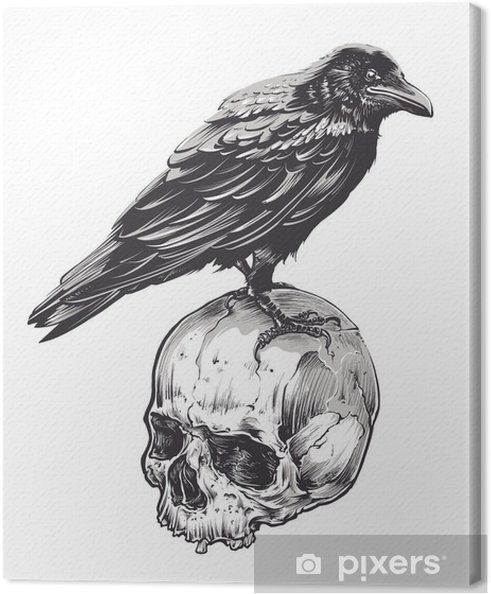 Canvas Kraai op Skull - Dieren