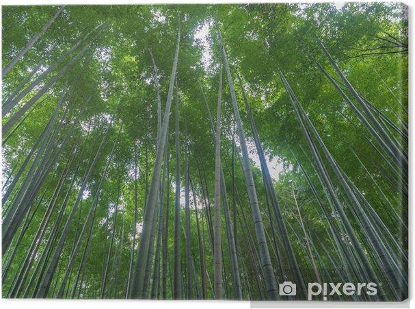 Canvas Kyoto Bamboo grove, Japan - Thema's