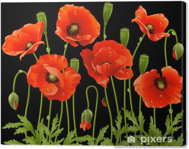 Canvas Lente bloemen: papaver - Thema's
