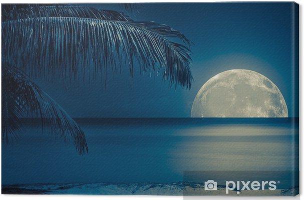 Canvas Maan weerspiegeld op het water van een tropisch strand - iStaging