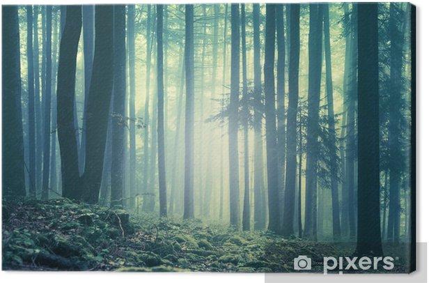Canvas Magische blauwgroene verzadigd mistig bos bomen landschap. Kleurfilter effect gebruikt. Het beeld werd genomen in het zuidoosten van Slovenië, Europa. - Herfst
