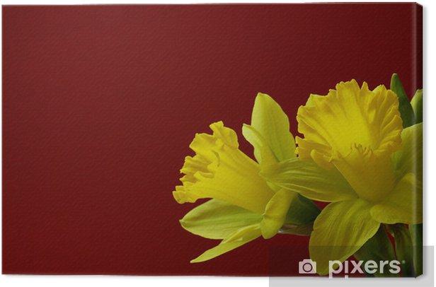 Canvas Narcis op rood - Internationale Vieringen