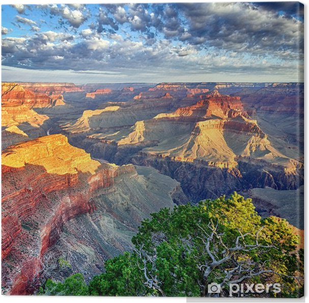 Canvas Ochtendlicht in de Grand Canyon - Thema's