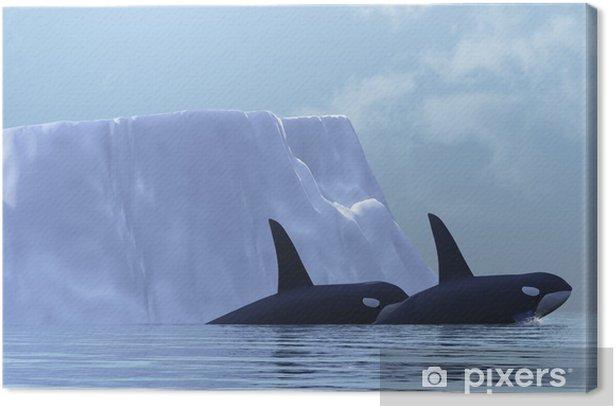 Canvas Orca - Onderwater