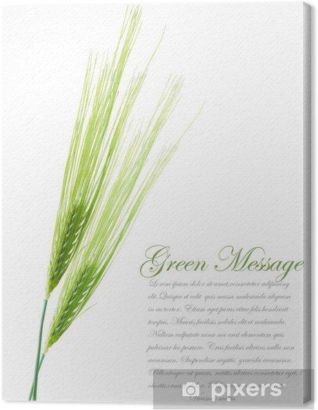 Canvas Oren van jonge groene tarwe. Het dossier bevat het knippen weg voor gescheiden - Zaden
