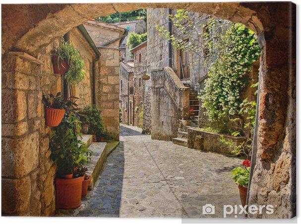 Canvas Overspannen geplaveide straat in een Toscaans dorp, Italië - Thema's