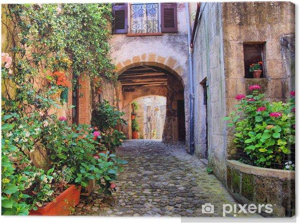 Canvas Overspannen geplaveide straat in een Toscaans dorp, Italië - Stijlen