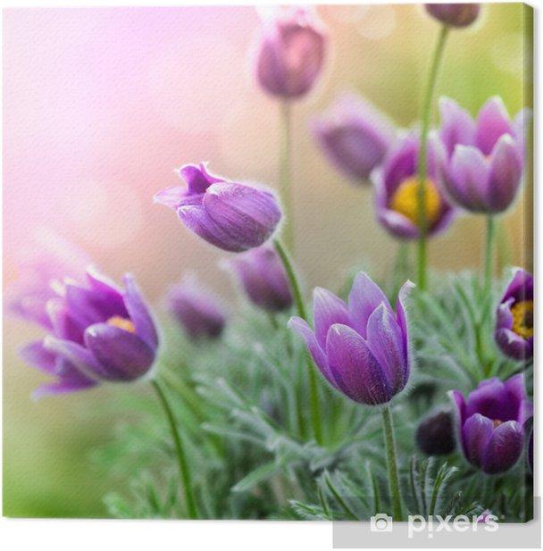 Canvas Paarse Bloemen van de lente - Thema's