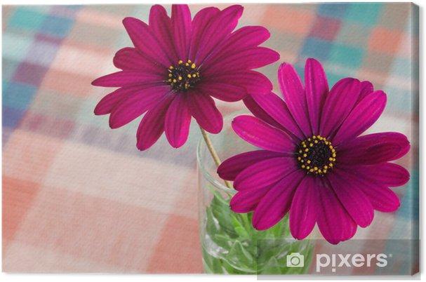Canvas Paarse daisy bloem - Bloemen