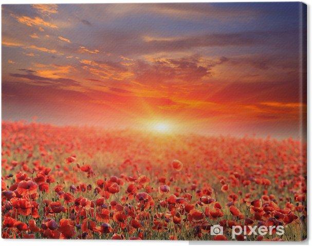 Canvas Papaver veld zonsondergang - Thema's