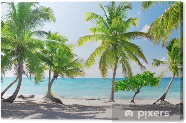 Canvas Paradijselijk eiland in de Dominicaanse Republiek - Thema's