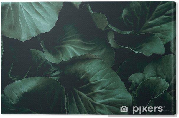 Canvas Plant achtergrond - Grafische Bronnen