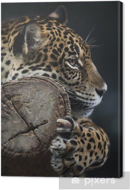 Canvas Portret van leopard - Thema's