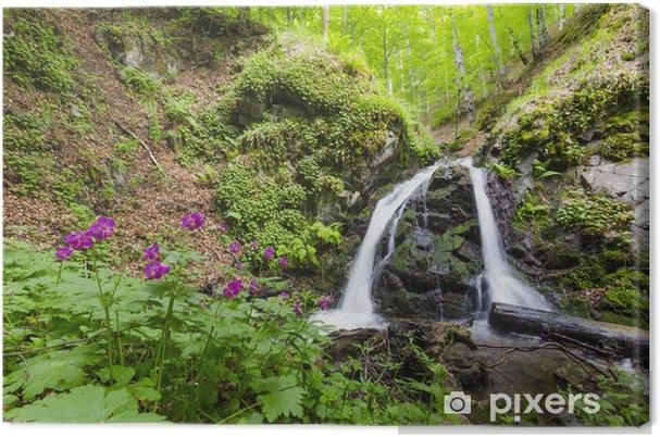 Waterval In Tuin : Canvas prachtige waterval in het regenwoud tuin macedonië u2022 pixers