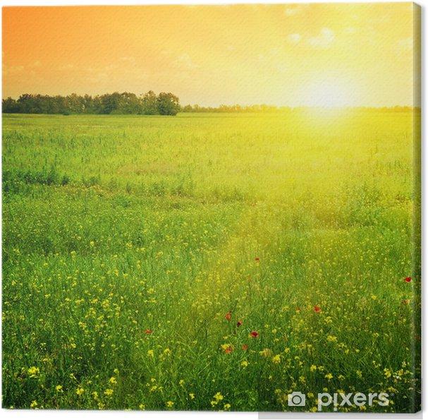Canvas Prachtige zonsondergang - Thema's
