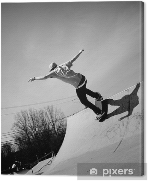 Canvas premium Skateboard Ramp - Skateboarding