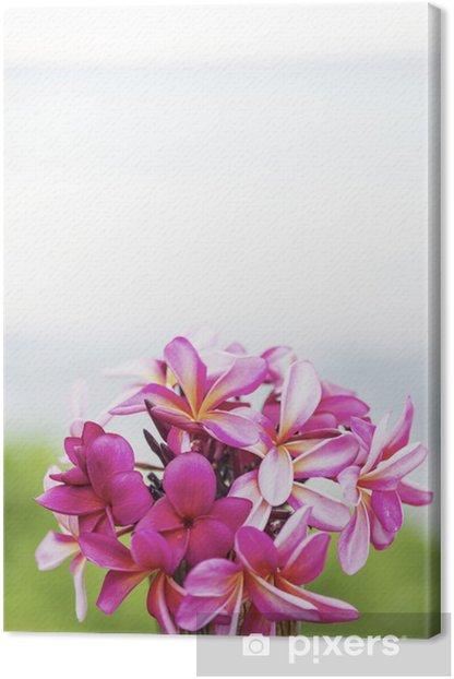 テーブルに置いたピンクのプルメリアと海-1 Canvas Print - Flowers