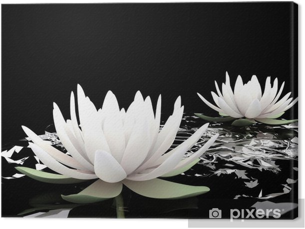 3d lotus on water Canvas Print - Styles