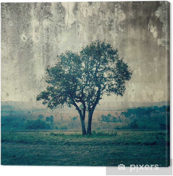A single tree represent loneliness and sadness Canvas Print - Styles