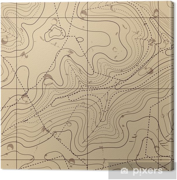 Abstract Retro Topography map Background Canvas Print - Holidays