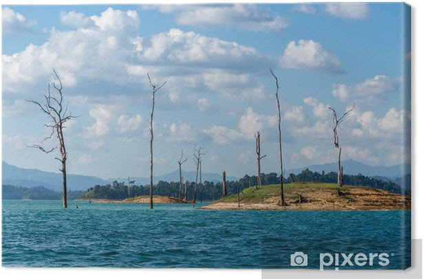 Adventure at Khao Sok, National Park, dead tree Postal. Asia exo Canvas Print - Water