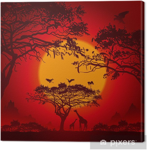 African sunset Canvas Print - Themes