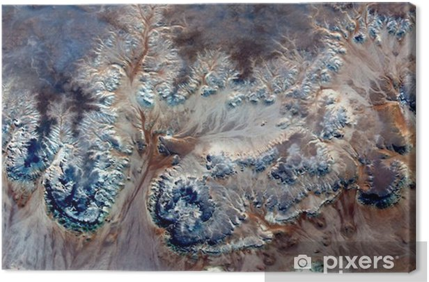 allegory underwater flowers,Stone plant fantasy,Abstract Naturalism,abstract photography deserts of Africa from the air,abstract surrealism,mirage,fantasy forms in the desert,plants,flowers, leaves, Canvas Print - Landscapes