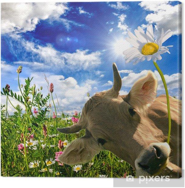 Alles Liebe zum Geburtstag: Kuh schenkt eine Blume :) Canvas Print - Themes